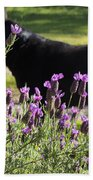 Lavender And Black Lab Bath Towel