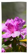 Lavender Rhododendrun Bath Towel