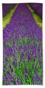 Lavender Dream Bath Towel