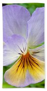 Lavender Pansy Hand Towel