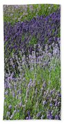 Lavender Sea Hand Towel