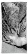 Lea Sleepy Cat Bath Towel