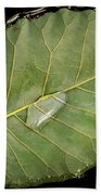 Leaf And Water Bath Towel