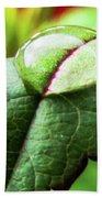Leaf Hand Towel
