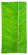 Leaf Detail Bath Towel