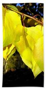Leaf Line Bath Towel