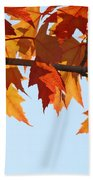 Leaves Autumn Orange Sunlit Fall Leaves Blue Sky Baslee Troutman Bath Towel
