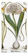 Leek And Irises, 1613 Bath Towel