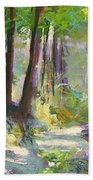 Lena Lake Trail Shadows Hand Towel