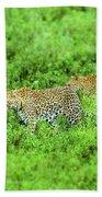 Leopard On The Move Bath Towel