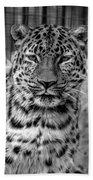 Leopard Bath Towel