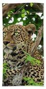 Leopard With Piercing Eyes Bath Towel