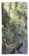 Lettuce Lake Swampland Hand Towel