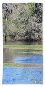 Lettuce Lake With Bridge Bath Towel