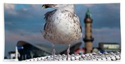 Liberty Of An Pacific Gull Bath Towel
