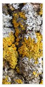 Lichens On Tree Bark Bath Towel