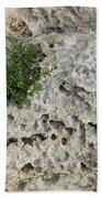 Life On Bare Rock - Pockmarked Limestone And Thyme Bath Towel