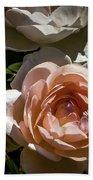 Light Pink Roses Bath Towel