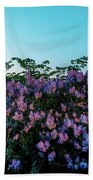 Lilacs And Sunset To Blue Hour Transition Over Gamla Stan In Stockholm Hand Towel
