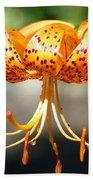 Lily Flowers Art Orange Tiger Lilies Giclee Baslee Troutman Bath Towel