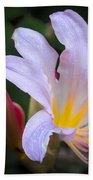 Lily In The Rain By Flower Photographer David Perry Lawrence Bath Towel