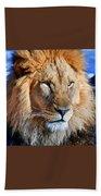 Lion 09 Bath Towel