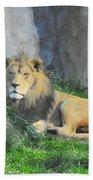 Lion At Leisure Bath Towel