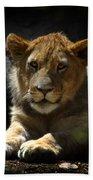 Lion Cub Bath Towel