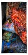 Lion Fish Bath Towel