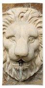 Lion Head Fountain Bath Towel