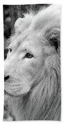 Lion Oh My Bath Towel