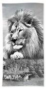 Lion Resting  Bath Towel