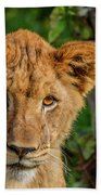 Lioness Cub Bath Towel