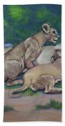 Lioness With Cubs Bath Towel