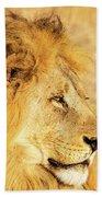 Lions Head Hand Towel