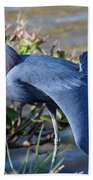 Little Blue Heron Sunbathing Bath Towel