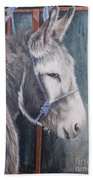 Little Donkey-glin Fair Bath Towel