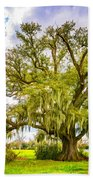 Live Oak And Spanish Moss 2 - Paint Bath Towel