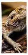 Lizard - Id 16217-202733-1873 Bath Towel