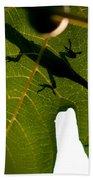 Lizard On A Fig Leaf Bath Towel