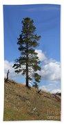 Lone Pine, Yellowstone Bath Towel