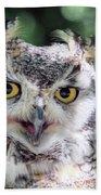 Long Eared Owl In The Trees Bath Towel