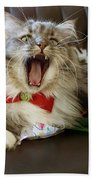 Long Haired Grey And White A Cat Yawns Amid Christmas Wrapping Paper Hand Towel