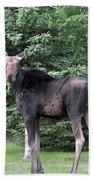 Long Legged Moose Bath Towel