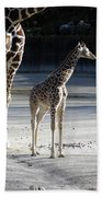 Long Legs - Giraffe Bath Towel