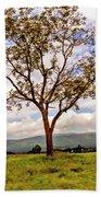 Long Tree Shenandoah Valley West Virginia  Bath Towel