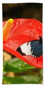 Longwing Hand Towel