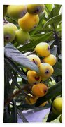 Loquat Exotic Tropical Fruit  2 Bath Towel