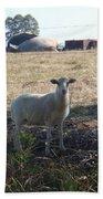 Lost Lamb Bath Towel