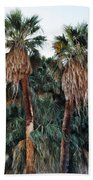Thousand Palms Oasis  Bath Towel